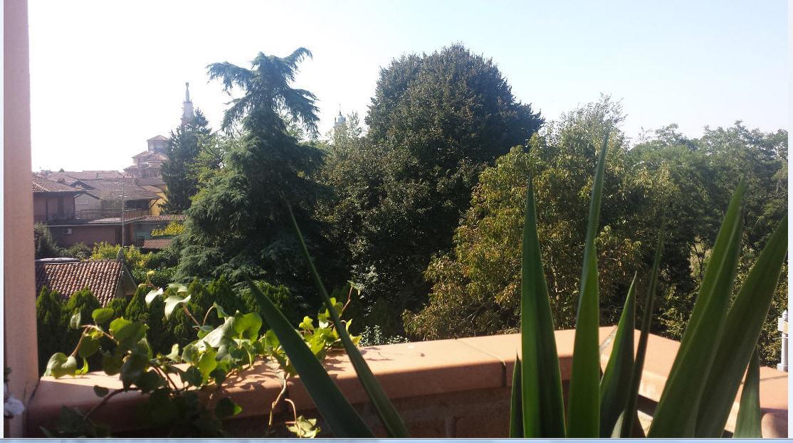 nicoletta_-foto-5-verde