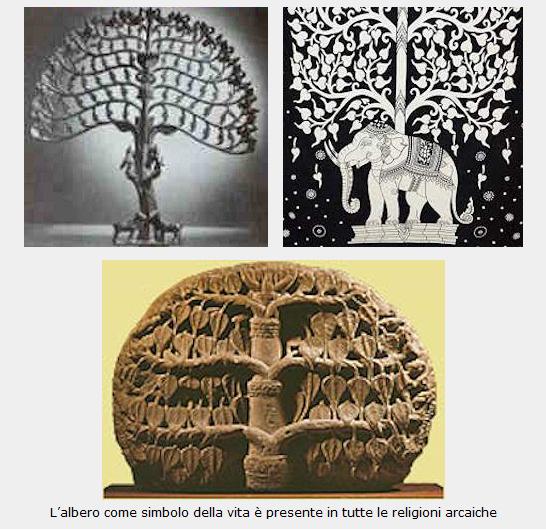 lalbero-della-vita